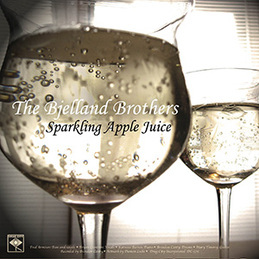 "The Bjelland Brothers / Taste of New York: ""Sparkling Apple Juice"" b/w ""Can We Stay With You?"" (DC576)"