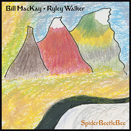 Bill MacKay & Ryley Walker: SpiderBeetleBee (DC688)