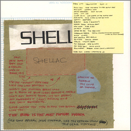 Shellac: The Bird Is The Most Popular Finger (DC44)