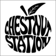 Chestnut Station: Chestnut Station (DC121)