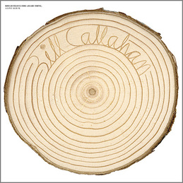Bill Callahan: Rough Travel For A Rare Thing (SN16)