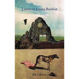 Bill Callahan: Letters to Emma Bowlcut (DC268)