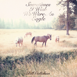 Bill Callahan: Sometimes I Wish We Were An Eagle (DC385)