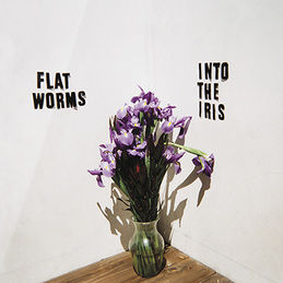 Flat Worms: Into the Iris (God#016)