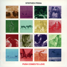 Stephen Prina: Push Comes To Love (DC147)