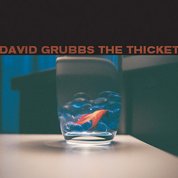 David Grubbs: The Thicket (DC160)